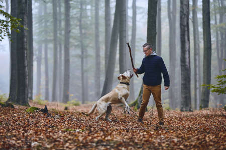 Young man playing with dog (labrador retriever) in foggy autumn forest.