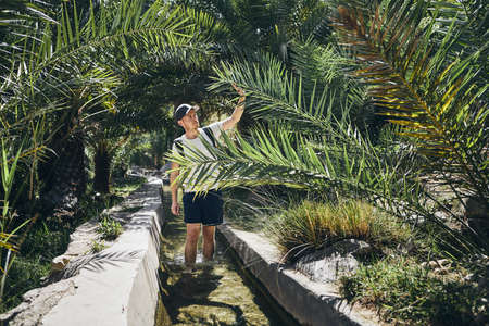 Young tourist is walking through water canal between palm trees. Wadi Bani Khalid, Sultanate of Oman.
