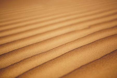 Close-up view of sand dunes in desert. Wahiba Sands, Sultanate of Oman.