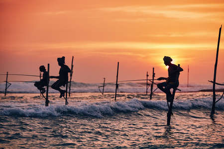 Silhouettes of the traditional fishermen. Traditional stilt fishing near Galle in Sri Lanka.
