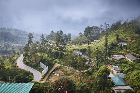 Town in the middle of tea plantations. Landscape in clouds. Haputale, Sri Lanka