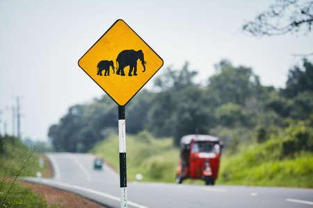 Road warning sign for elephant crossing road against traffic with tuk tuk, Sri Lanka Imagens