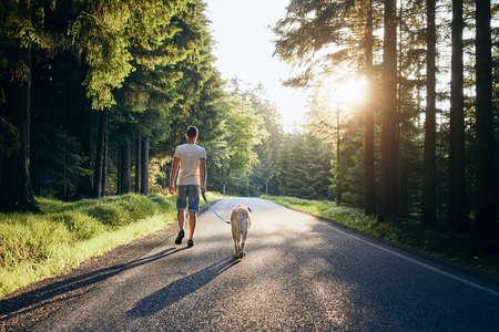 L'été avec chien. L'homme et son labrador retriever marchant sur la route en forêt contre le beau coucher de soleil.
