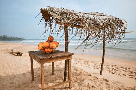 Fresh coconuts for sale on sand beach. Matara, Sri Lanka