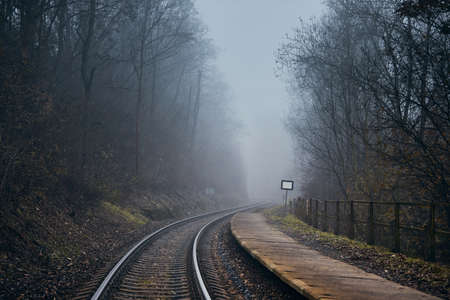 Railway in mysterious fog. Old railroad station in the middle of forest in autumn. 版權商用圖片