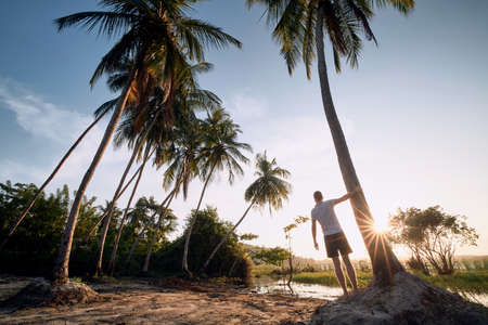 Young man standing under palm tree and watching sunset, Sri Lanka.