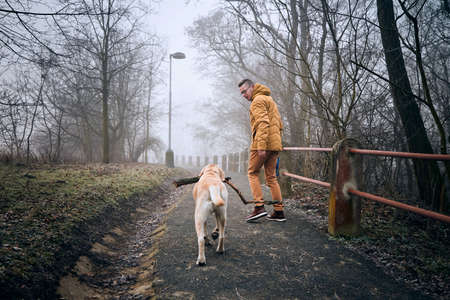 Young man walking with his dog (labrador retriever) on sidewalk in gloomy foggy mornig. Foto de archivo