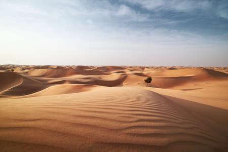 Sand dunes in desert landscape. Abu Dhabi, United Arab Emirates Stock Photo
