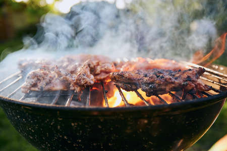 Grilling chicken meat on barbecue at garden during summer day.