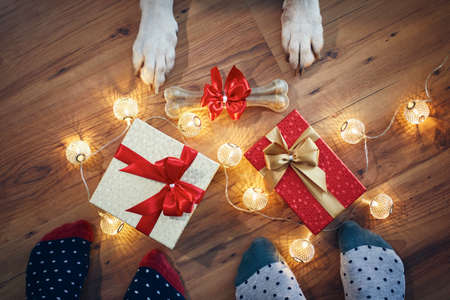 Holiday celebration at home. Family around christmas gifts and bone for dog. Stock fotó