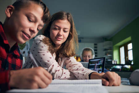 Online school lesson. Children learning via internet with laptops at home. Stock fotó