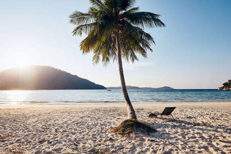 Tropical beach at beautiful sunset. Empty chair under palm tree against seascape. Perhentian islands, Malaysia.
