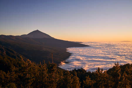 Landscape with volcano Pico de Teide above clouds at beautiful dusk. Tenerife, Canary Islands, Spain.