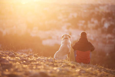 Rear view of young man with dog at sunrise. Pet owner sitting with his dog on hill against city. Stock fotó