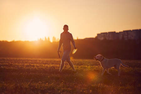 Man with dog at beautiful sunset. Silhouette of pet owner with labrador retriver during walk on field.
