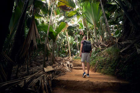 Young man with backpack discovering jungle. Traveler in tropical rainforest in Seychelles.