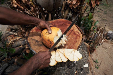 Man cuttiing fresh coconut by machete at local market in Seychelles.