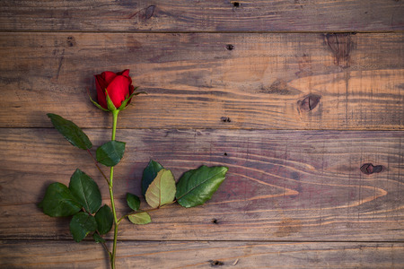 Red rose on wooden. Valentines day composition of a red rose lying on a floor.