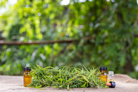 Medicinal cannabis with extract oil in a bottle Stock Photo - 99394555