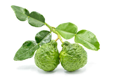 Fresh Bergamot fruit with leaf isolated on white background Standard-Bild