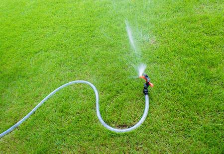 Sprinkler watering in the garden.On the lawn 版權商用圖片