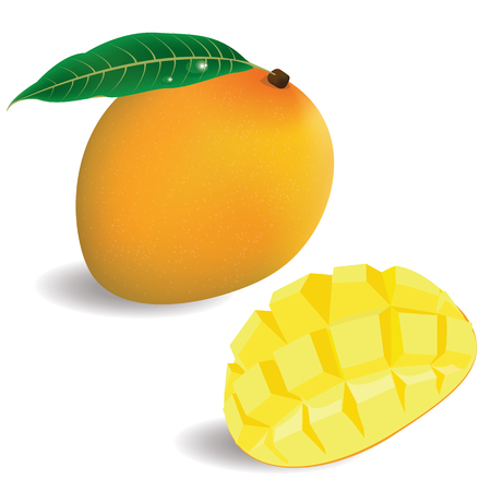 fruit drink: illustration mango on white background. 1