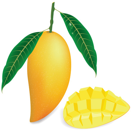 mango slice: illustration mango on white background.