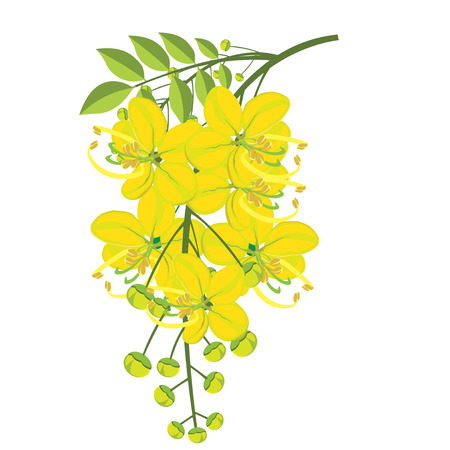 illustration. Golden shower on white background.