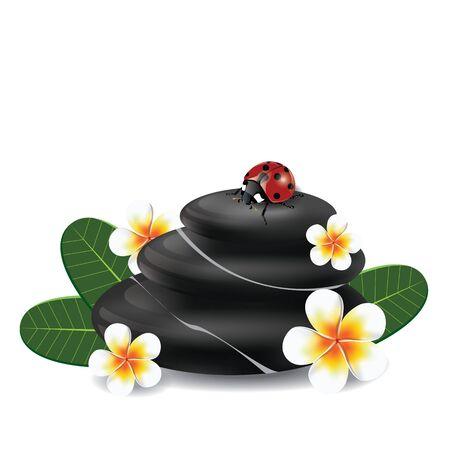 zen stones: illustration. spa concept with zen stones and frangipani flower on white background.