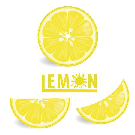 lemon: illustration lemon fruits on white vector