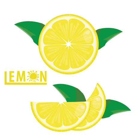 fruitful: illustration lemon fruits on white vecto