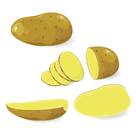 illustration potato on white background. 向量圖像