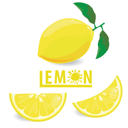 illustration lemon fruits on white vector 5 Ilustrace