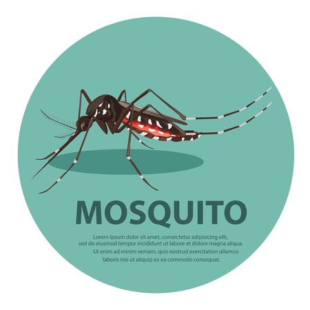 stop mosquito: illustration. mosquito cartoon Illustration