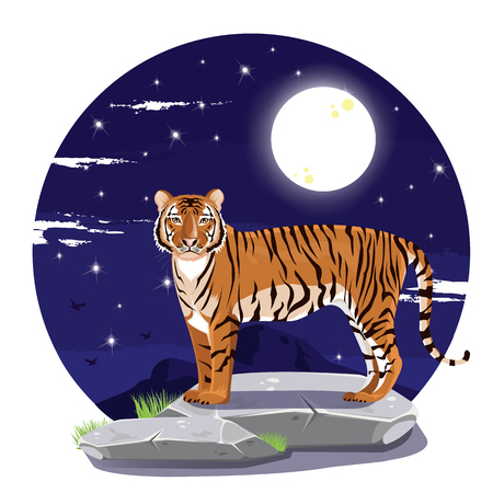 bengal light: illustration. tiger stand