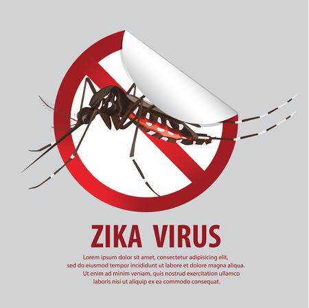 zika virus  イラスト・ベクター素材