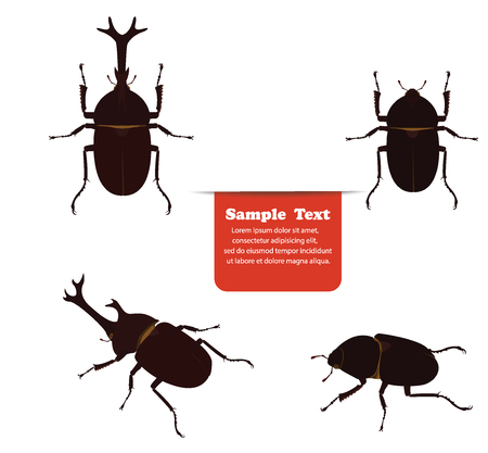 stag beetle: Mushiking beetle male and female. vector