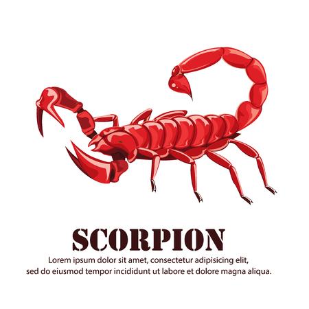 illustration.scorpion