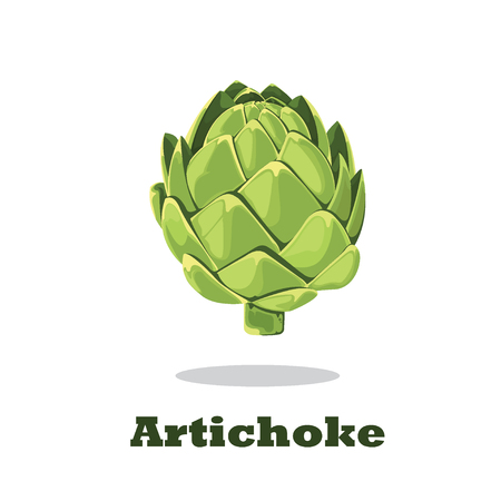 Artichoke Vector illustration