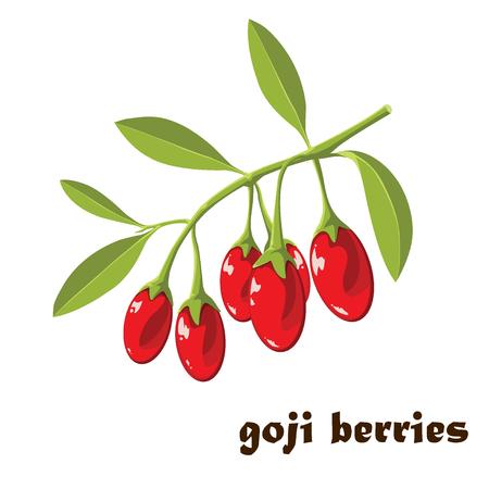 Superfood Goji berries Vector illustration  イラスト・ベクター素材