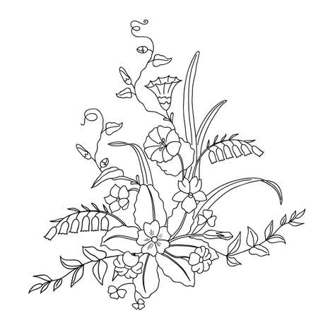 campanula: Beautiful bouquet of wild flowers. illustration.