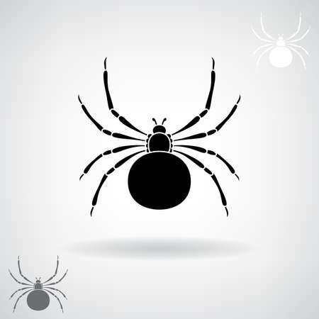 Black silhouette of a spider illustration.