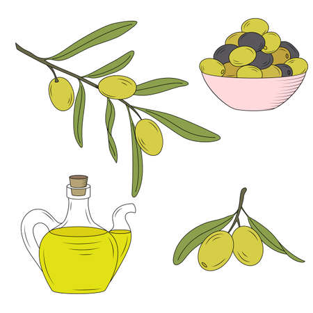 mediterranean diet: Bottle of oil and the branch of the olive tree.