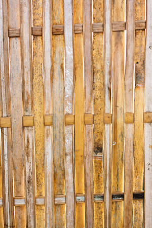 Background texture of a bamboo fence. photo