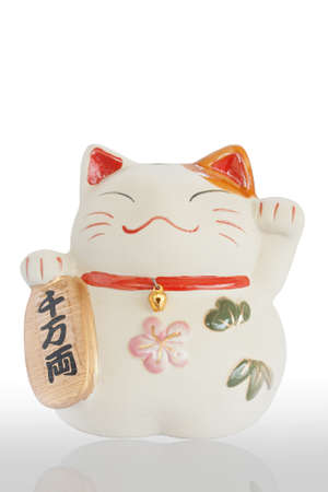 Japan lucky cat with reflect isolated on white background  photo