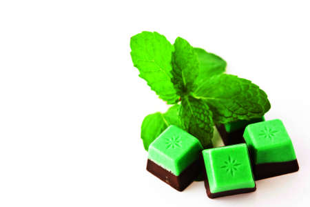 Chocolate mint and mint isolated on white background  photo