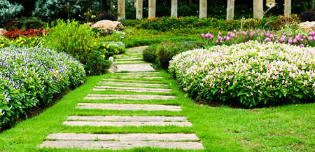 Landscaping in the garden  The path in the garden  Фото со стока