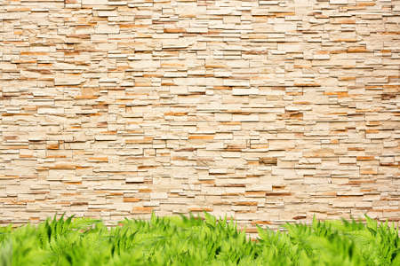 Modern brick wall and green grass photo