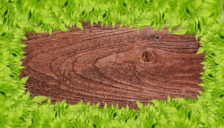 Wooden background with green grass border