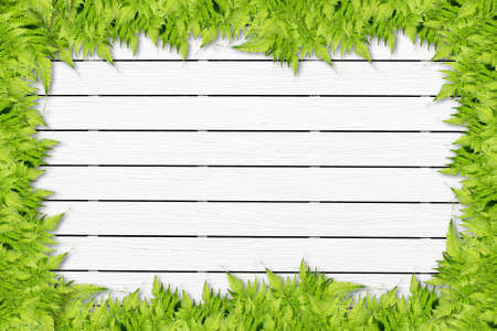 White Wooden background with green grass border photo